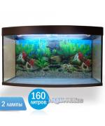 Аквариум Вижин-160