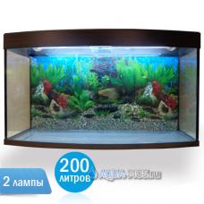 Аквариум Вижин200