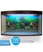 Аквариум Вижин-300