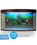 Аквариум Вижин-450