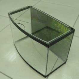 Виды аквариума на 15 литров и уход за