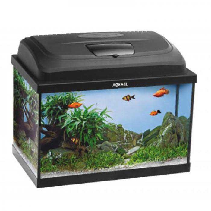 аквариум 25 литров купить аквариум 25 литров