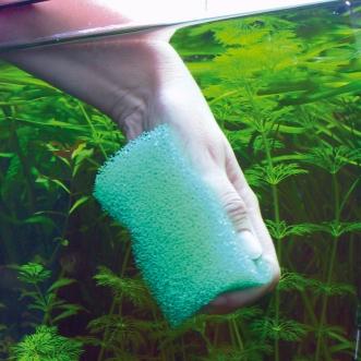 Чистка и дезинфекция аквариумов