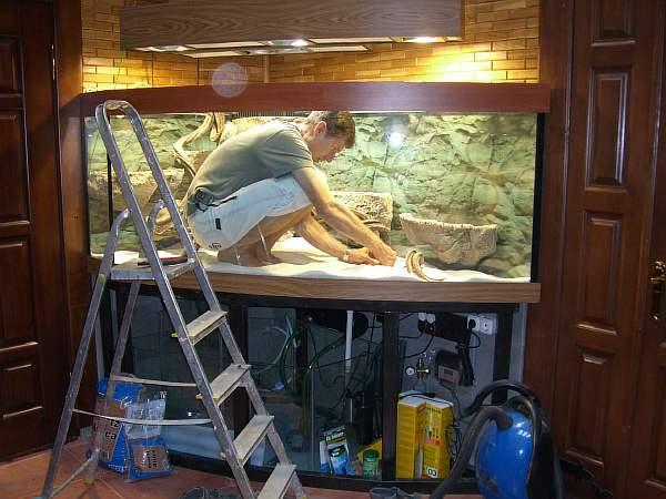 правильный уход за аквариумом и рыбками